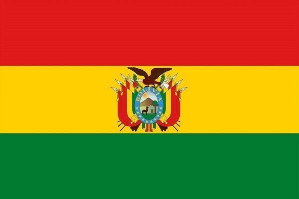 کرونا انتخابات ریاست جمهوری بولیوی را به تعویق انداخت